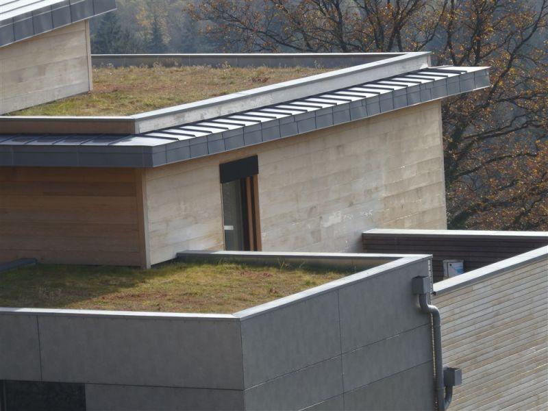 r alisation de toiture v g tale sur membrane sarnafil. Black Bedroom Furniture Sets. Home Design Ideas